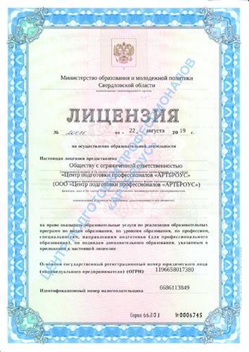 Лицензия министерства образования: серия 66Л01 № 0006745. Титульная страница.